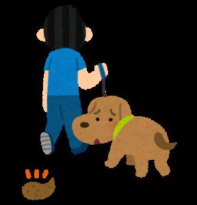ペット糞尿の消臭について